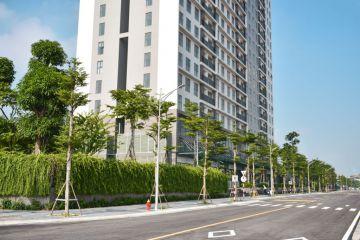 đường cạnh công viên và dự án Mỹ Đình Pearl